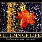 Autumn Medicare