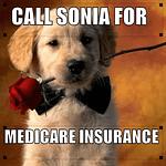 Call Sonia Puppy