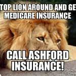 Stop Lion Around, Call